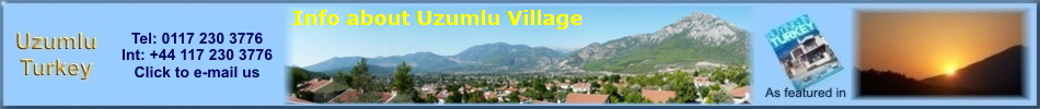 Info about Uzumlu Village